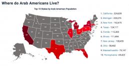 Arab American Institute map